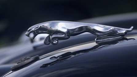 figura representativa de la marca Jaguar sobre el capó d'un cotxe clàssic